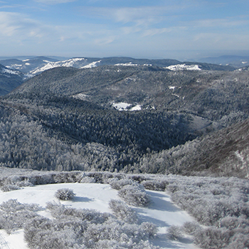 Plans des pistes Ski Alpin