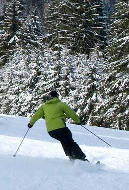 Plan of the Gérardmer ski slopes