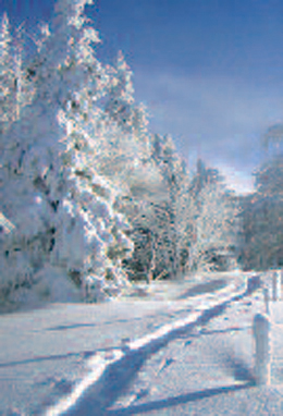 Circuit de ski de fond