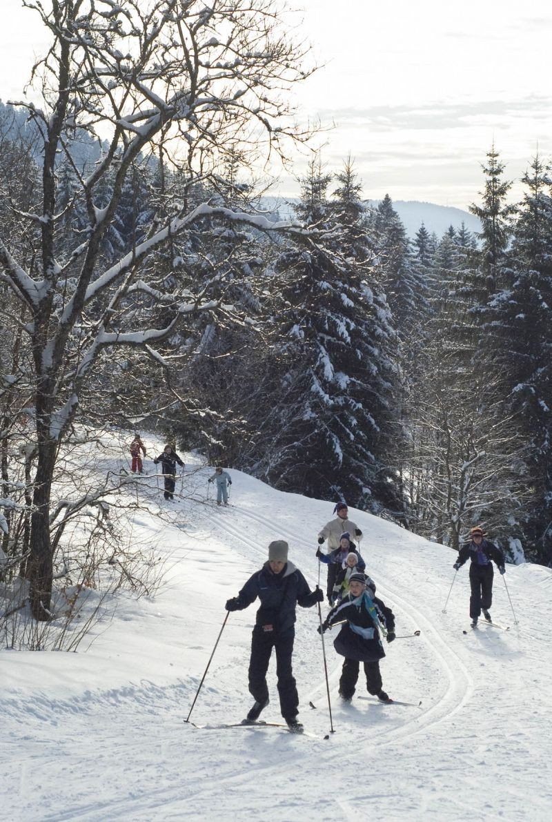 Cross-country skiing in Gérardmer
