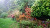 jardin-nord-475852