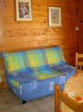 location vacances appartement gerardmer vosges GL011