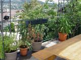 gr016-terrasse-201181