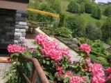 maison-location-vacances-vosges-bussang-juin2016-2-96574