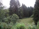 photos-maison-blanche-rr-046-redim-385713
