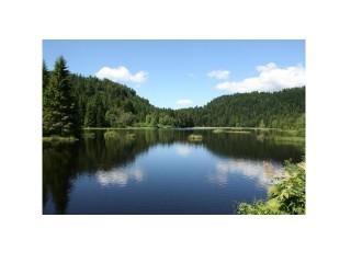 le-lac-de-lispach-13447