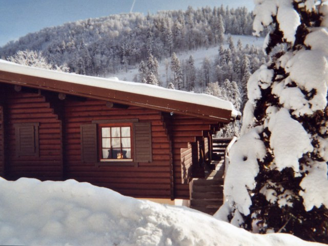 Apartment in a chalet