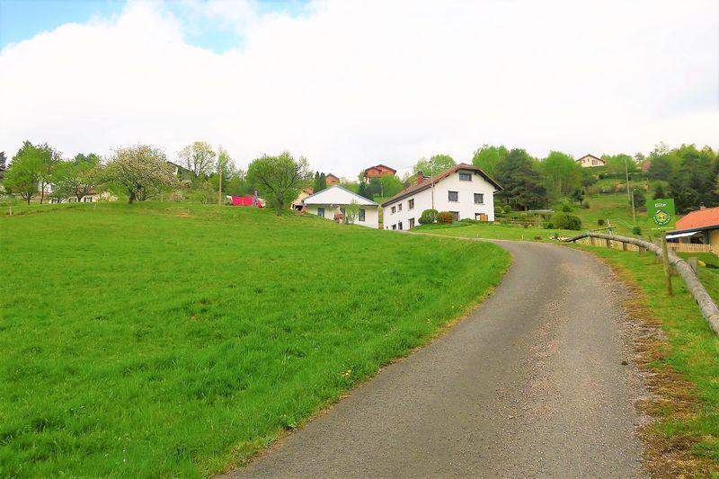 location-appartement-saint-maurice-sur-moselle-vosges-1-180009