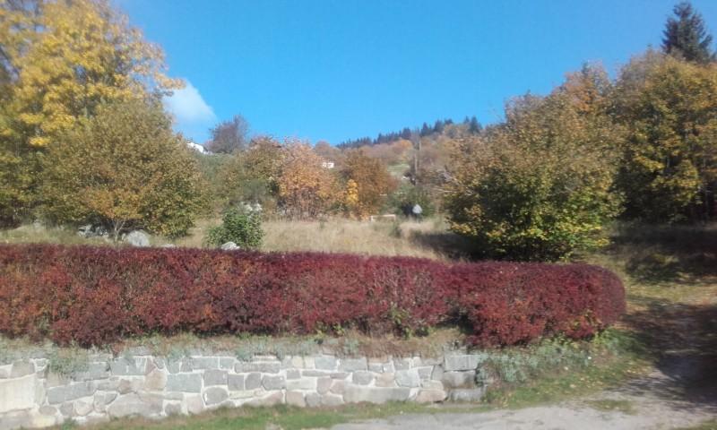 Maison 4 personnes Le Gîte Pima - La Bresse Hautes-Vosges